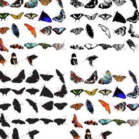 93 Butterflies - vector #223703 gratis