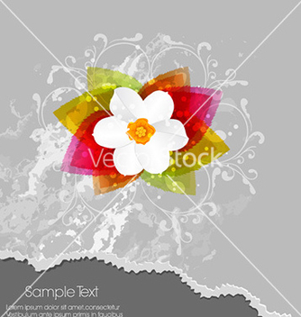 Free floral background vector - Free vector #230773