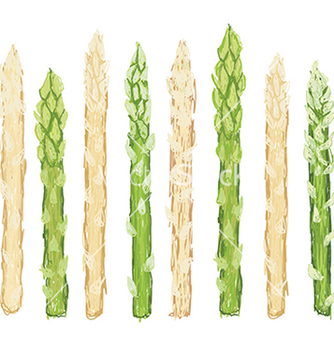 Free closeup of fresh green and white asparagus raw vector - Free vector #233453