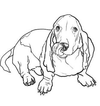 Free basset hound dog sitting and stick out its tongue vector - vector gratuit #235673