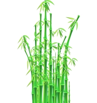 Free bamboo sticks over white background vector - Kostenloses vector #237313