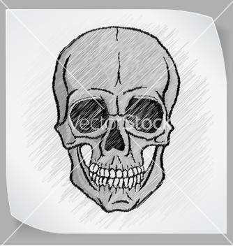 Free human skull vector - Kostenloses vector #237833