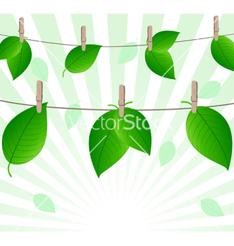 Free leaves on ropes vector - vector #243053 gratis