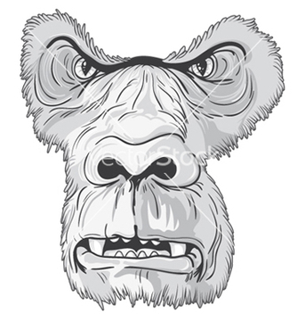 Free vintage tshirt design with gorilla face vector - бесплатный vector #244203