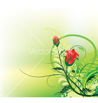 Free splash floral background vector - vector gratuit #246493