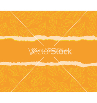 Free torn cardboard vector - Kostenloses vector #251883