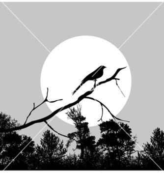 Free bird on a branch vector - Free vector #257303