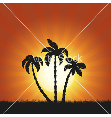 Free summer background vector - Free vector #259203