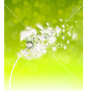 Free spring background vector - Free vector #261983