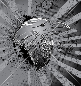 Free raven with grunge background vector - Free vector #263663