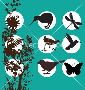Free kiwi bush vector - Kostenloses vector #269723