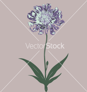 Free wild flowers vector - Free vector #270983