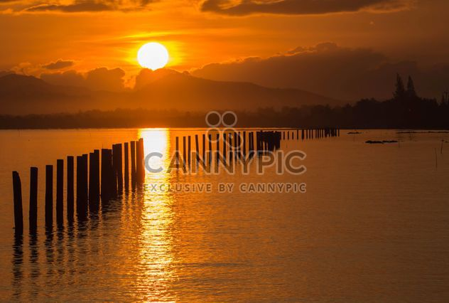 Golden sunset - Free image #271863