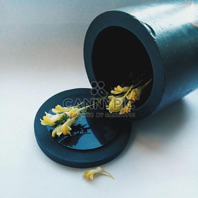 Gelbe Blumen, Vase, Herbst - Kostenloses image #272173