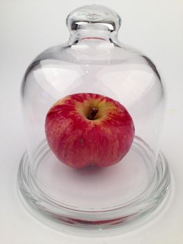 Red apple under glass cover - бесплатный image #272523