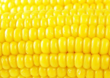 #goyellow food corn - image #272593 gratis