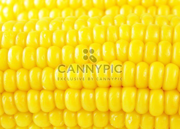 #goyellow alimentaire maïs - image gratuit #272593