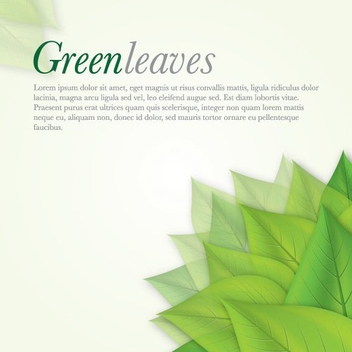 Green Leaves Fresh Background - vector gratuit #274753