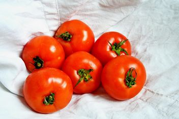 Six Tomatoes - Kostenloses image #274833