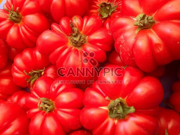 Bunch of tomatoes - Free image #274843