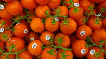 Pile of Red tomatoes - image gratuit(e) #274863