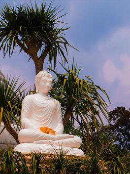 Buddha statue - Free image #275023