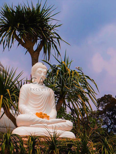 Estátua de Buda - Free image #275023