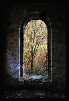 Window - Free image #276923