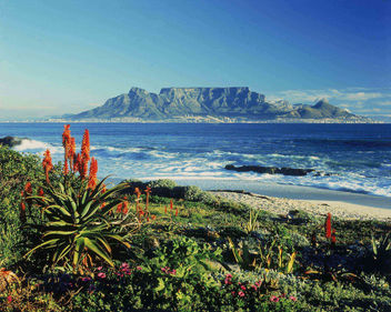 Table Mountain - South Africa - Free image #278253