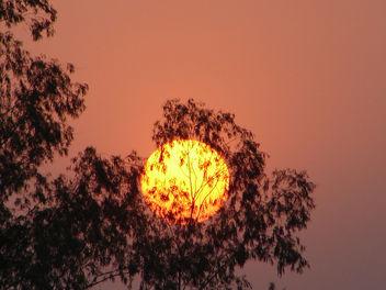 Sunset - Free image #278413