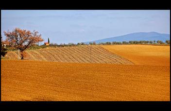 Campagna toscana - Kostenloses image #279513
