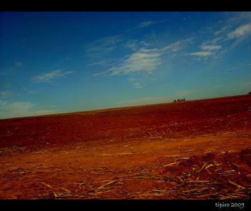Red Land - Free image #279863