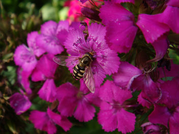 Learn and know more about life - Kostenloses image #279903