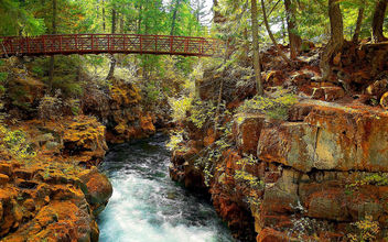Nature - Rogue River, Klamath Mountains, Oregon - Free image #280373