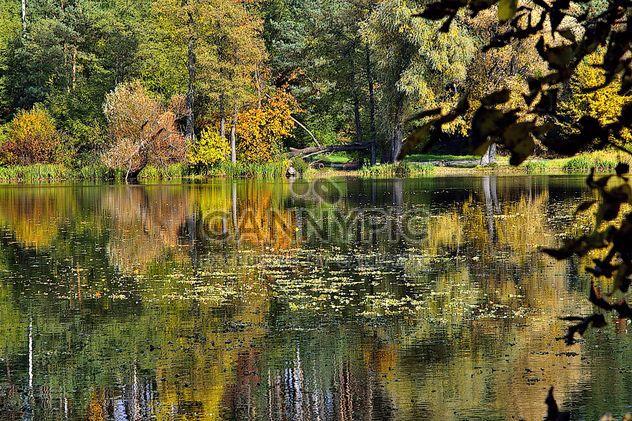 Autumn lake - Free image #280933