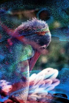 Pelican - Free image #283413