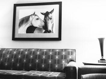 Hotel room, Austin, Texas - бесплатный image #283813