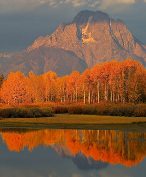 jackson Hole, October 2010 - Free image #284993
