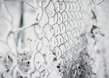 358/365 Frozen gates - image gratuit #285993