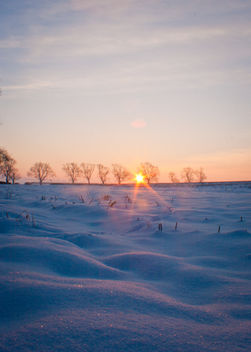 Sun rise on a beautiful day - бесплатный image #287523