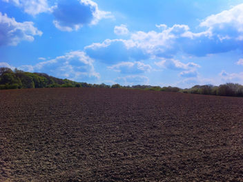 Fields At The Start Of Summer - Free image #288623