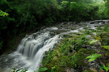 Fallsville Waterfalls - бесплатный image #288713