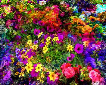Groovy Garden - бесплатный image #288753