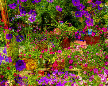 Buy Flowers - Kostenloses image #288913