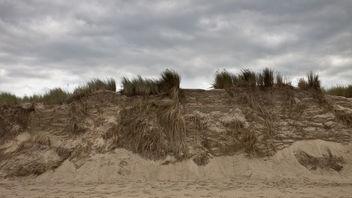 beach dunes - Free image #289543