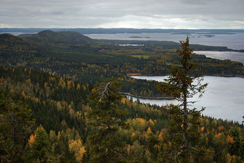 Koli National Park - Free image #289963