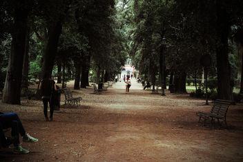 Borghese - Free image #290013