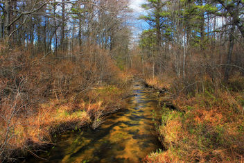 Jeans Run (Headwaters) (1) - Free image #291753