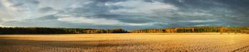 Autumnal Light - бесплатный image #294173