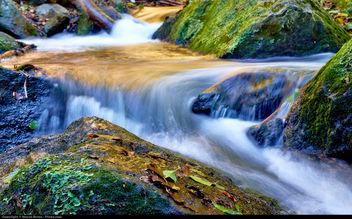 nature - image gratuit #294713